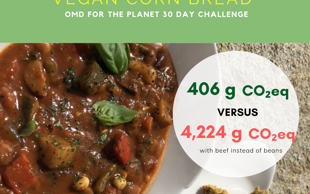 Day 7 of Oprah's OMD for the Planet 30 day challenge–Veggie Chili